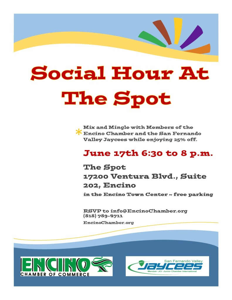 D - The Spot Mixer - June 17th